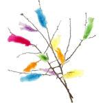 Puranovo perje - barvno